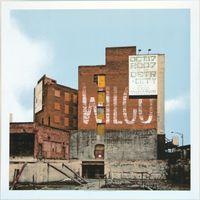 Wilco Poster - Fox Theatre, Detroit - Crosshair