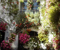 http://www.jardinerosenaccion.es/galeria.php?id_gal=38
