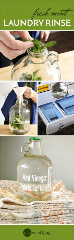 How To Make A Scented Vinegar Fabric Softener Rinse · Jillee Learn how to make a scented vinegar laundry rinse that can replace your store-bought fabric softener. All you need is some fresh herbs and white vinegar! Homemade Cleaning Products, Cleaning Recipes, Natural Cleaning Products, Cleaning Hacks, Household Products, Cleaning Schedules, Diy Products, Household Tips, Cleaning Supplies