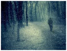 """""""Take long walks in stormy weather or through deep snows in the fields and woods, if you would keep your spirits up. Deal with brute nature. Be cold and hungry and weary."""" - Henry David Thoreau"""