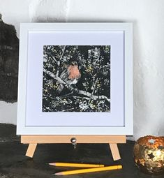 Instagram Site, Small Paintings, Prints For Sale, Gouache, Layering, Robin, Woodland, Wildlife, Website