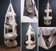 The Cat's Trapeze.  The item pictured is the deluxe model (124.99) meaning it has three tiers and comes with the pillows for stuffing. Two tiers are less, and if you opt to stuff them yourself they are even cheaper. I'm sure for someone clever with a sewing machine could also DIY their own version.