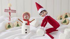 Scrumptious Snowman