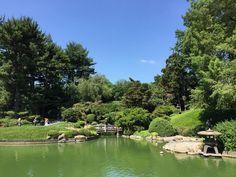 Jardín Japonés.  Japanese Garden.  Brooklyn Botanic Garden NYC  #iny #brooklynbotanicgarden #verano2016 #viajeranoturista #summer2016 #travelernottourist