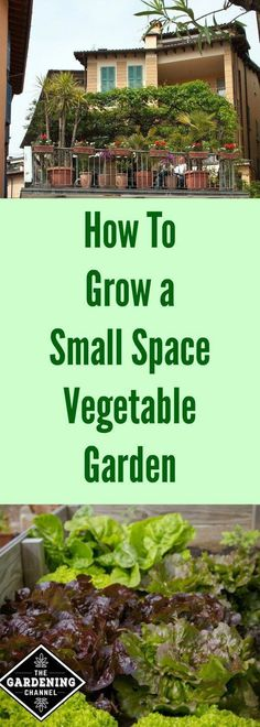 How to Grow a small space vegetable garden. You can grow organic produce even if you have a small yard or patio. How to Grow a small space vegetable garden. You can grow organic produce even if you have a small yard or patio. Backyard Garden Landscape, Backyard Vegetable Gardens, Small Backyard Gardens, Small Space Gardening, Garden Bed, Apartment Vegetable Garden, Garden Landscaping, Garden Pallet, Herbs Garden