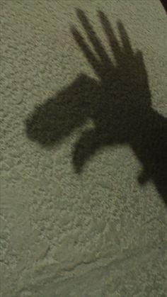 "Titulo:"" sombra alce"" Autor:Téllez Castañeda Miranda Abigail Obturación:1/20 Apertura:3.5 Fecha:7/12/2016 Iso: 1600"