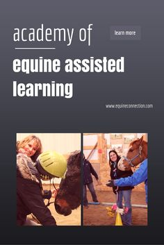 A CERTIFIED EQUINE-ASSISTED LEARNING Course #equineconnection