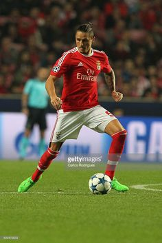 Benfica's midfielder Ljubomir Fejsa during the match between SL Benfica and Club Atletico de Madrid for the UEFA Champions League at Estadio da Luz on December 2015 in Lisbon, Portugal. Sports Clubs, Lisbon Portugal, Uefa Champions League, Ronaldo, Victorious, Madrid, First Love, December, Harry Potter