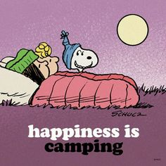 #campingquote #campinglife #travellife