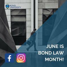 392 Best Law School images in 2019 | Law school, Bachelor of