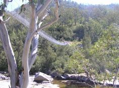 6 foot track - a 3 day track from Katoomba to the Jenolan Caves Jenolan Caves, Blue Mountains Australia, Trekking, Mother Nature, Things To Do, Track, Hiking, Outdoor Decor, Things To Make