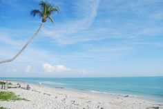 ++Floor+to+Ceiling+Direct+Gulf+Views!Vacation Rental in Sanibel Island from Sanibel Beach, Sanibel Island, Island Beach, Vacation Rental Sites, Vacation Ideas, Beach Club, Oh The Places You'll Go, Beautiful Beaches, Condo