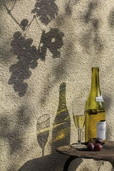 Are You Experienced? - Expolore the best and the special ideas about Italian wine Wine Photography, Still Life Photography, Shadow Photography, Italian Summer, Jolie Photo, Summer Aesthetic, Light And Shadow, Summer Vibes, Wines