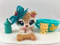 Littlest Pet Shop RARE Cream Husky Puppy #1013 w/Turquoise Eyes & Accessories #Hasbro