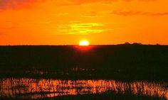 Sunset on the Everglades
