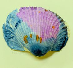 painting shells with watercolors as ocean art for kids
