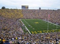 the big house, wolverin, blue, arbors, ann arbor michigan, place ive, university of michigan