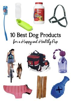 Here are the very best dog products to keep your pet healthy and happy, including vitamin supplements, leashes, toys, and exercise tools.