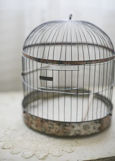 Victorian Beehive Maxwell Bird Cage by sadieolive on Etsy