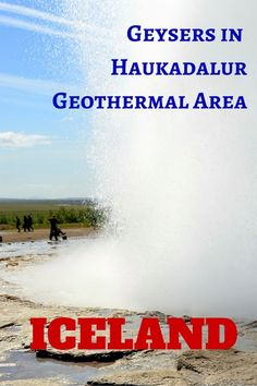 See the amazing hotspots and geysers in the Haukadalur Geothermal Area in Iceland with kids.
