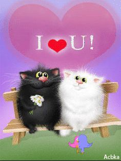 I <3 YOU (B & W KITTENS ON A BENCH)
