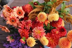 8 Tips for Growing Better Dahlias