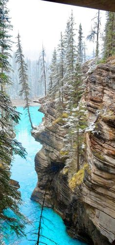 Athabasca Canyon in Jasper National Park! 10 Amazing Things To See And Do In Alberta, Canada! Visit the incredible Jasper National Park | Columbia Icefields | Banff National Park | Lake Abraham | Lake Louise | Peyto Lake and so much more!