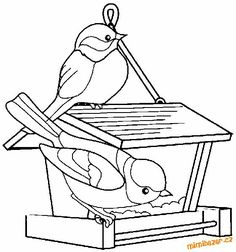 omalovanka Bird Coloring Pages, Adult Coloring Pages, Coloring Pages For Kids, Coloring Sheets, Coloring Books, Bird Drawings, Easy Drawings, Hand Embroidery Patterns, Digi Stamps