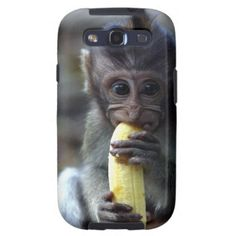 $$$ This is great for          	Cute baby macaque monkey eating banana samsung galaxy s3 cases           	Cute baby macaque monkey eating banana samsung galaxy s3 cases We provide you all shopping site and all informations in our go to store link. You will see low prices onDeals          	Cute...Cleck Hot Deals >>> http://www.zazzle.com/cute_baby_macaque_monkey_eating_banana_case-179717881541856761?rf=238627982471231924&zbar=1&tc=terrest