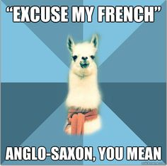 Excuse my French; Anglo-Saxon, you mean xD Linguist Llama