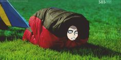 aot funny gifs - Google Search