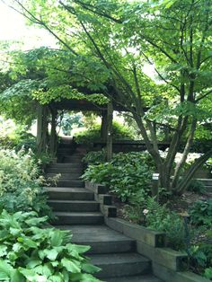 I would love to have this in my backyard. Arbor @ Dawe's Arboretum, Newark, Ohio