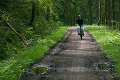 Portland, OR ranks high among biking enthusiasts of the nation, with plenty of mountain bike trails for beginners and experienced riders alike. http://sunnyscope.com/3-mountain-biking-trails-beginners-portland/