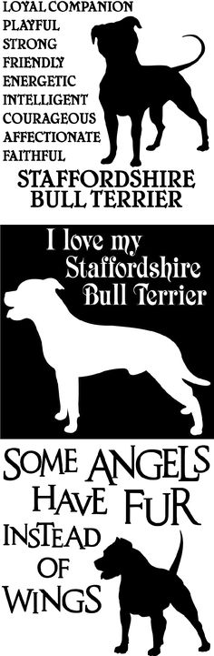 SHIRTS & GIFTS FOR THE DOG LOVER. THESE STAFFORDSHIRE BULL TERRIER DESIGNS ARE AVAILABLE IN 18 DIFFERENT INK COLORS… T-shirts, hoodies, blankets, mugs, magnets, and more.  There are 40 other breeds to choose from.