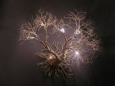 Roots, Wall fixture.Handmade Wall Light made of pewter wires