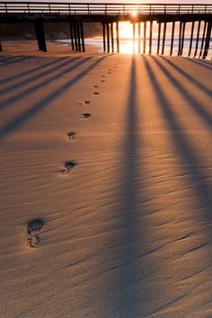 Footprints in the Sand, going to the sea