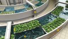 Farming in the Sky, with a food market on the bottom level.  Now that is FRESH food!