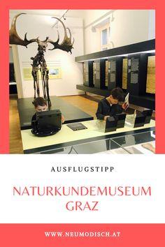 Entdecken, forschen & staunen - das alles bietet das Naturkundemuseum in Graz - ein perfekter Ausflug für die ganze Familie. Die Steiermark hat in punkto Museen generell so einiges zu bieten. Mehr dazu auf unserem Blog: Interaktives Museum, Blog, Physical Science, Graz, Explore, Tips, Blogging