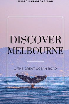 There is so much to do in Australia's culture capital Melbourne. Whilst you're there you have to visit the iconic Great Ocean Road! Underground Bar, Melbourne, Ocean, Australia, Culture, Sea, The Ocean