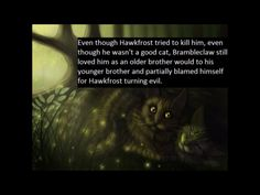 Even though #Hawkrfost tried to kill him, even though he wasn't a good cat, #Brambleclaw still loved him as any older brother would to his younger brother and partially blamed himself for #Hawkrost turning evil.