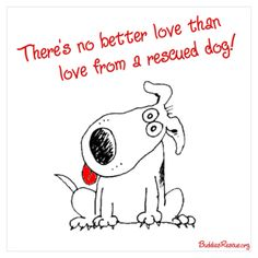 There's no better love than love from a rescued dog