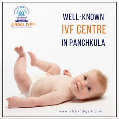 Jindal IVF is a leading IVF fertility center & infertility treatment clinic in Panchkula. Cost-effective IVF treatments from specialized doctors & experts Infertility Clinic, Ivf Clinic, Ivf Treatment, Infertility Treatment, Fertility Center, Blessing, Centre, Happiness, Wellness