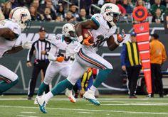 Miami Dolphins 2012 Season