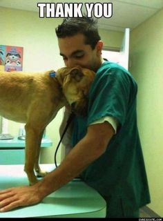 I love this photo of a dog apparently saying thanks to the vet treating him♥... How many 'Shares' for this photo ?