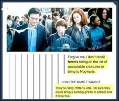 22 Harry Potter Memes That You'll Siriusly Lovegood