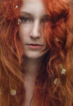 Rote Hairs