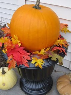 Halloween Urn Decorations Best Simple  Straw In Urns With Pumpkin  Happy Fall Y'all Review