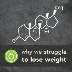 Exclusive Excerpt: Why We Struggle to Lose Weight | Greatist