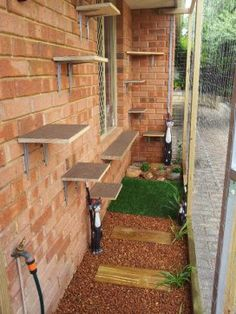"Creative ""Catio"" enclosures keep cats safe in their yards - Animals Matter. Love that someone called it a Catio!"