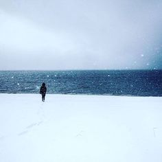 Snowy days on our trip to Norway. Snowflakes. Walk at the beach. Nature lover. Photo by Hinrich Carstensen.
